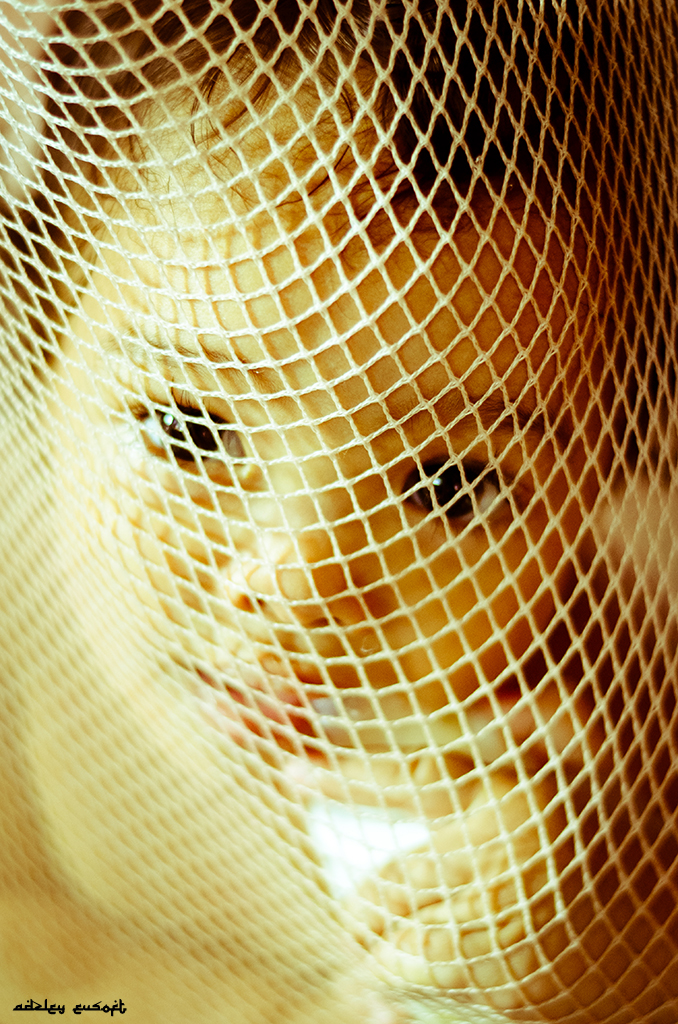 Behind the Cradle Net  20/12/2012 by Adzley Eusoft Online Photo Exhibition Онлайн Фотовыставка