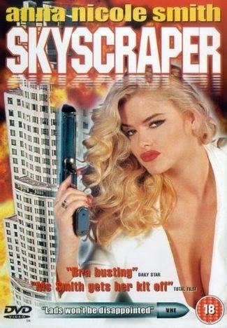 Skyscraper 1996 Hindi Dual Audio 720p DvdRip Uncut 650MB