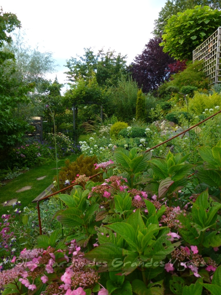 Le jardin des grandes vignes quelques fleurs du jour - Le jardin des grandes vignes ...