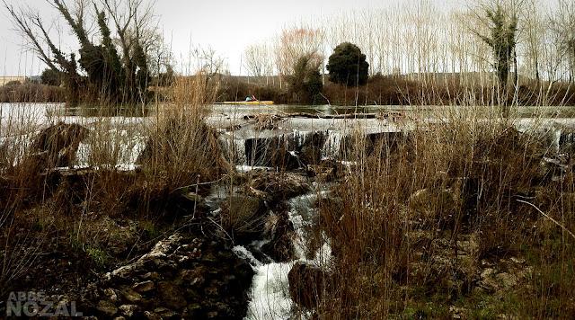 Piragua amarilla sobre el río Carrión, 2013 Abbé Nozal