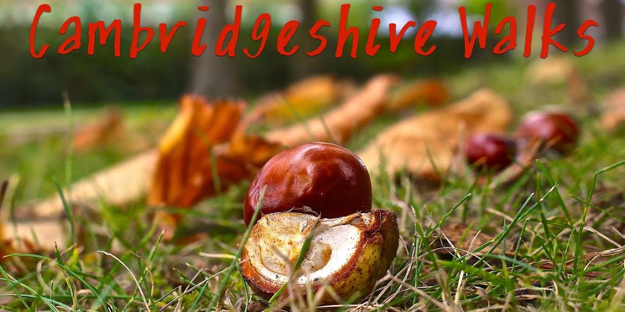 Cambridgeshire walks