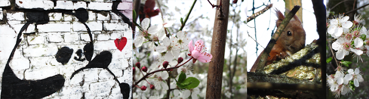 Frühlingsbanner Cherry
