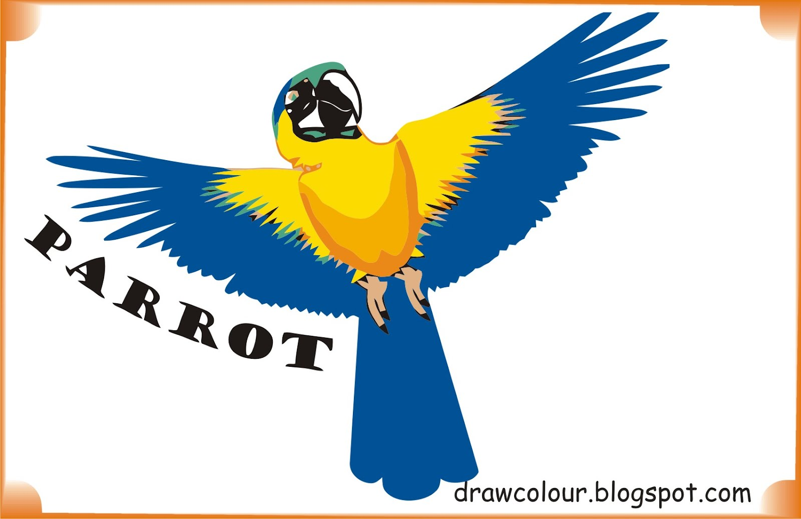 parrot-coloring-pages