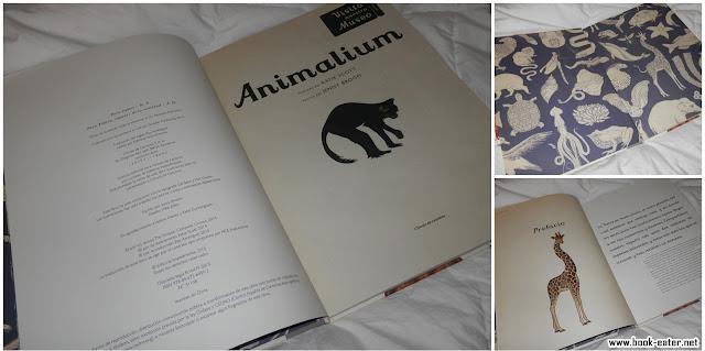 Animalium fotografía interior