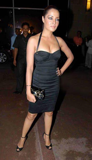 actresses photos bollywood actress celina jaitley in