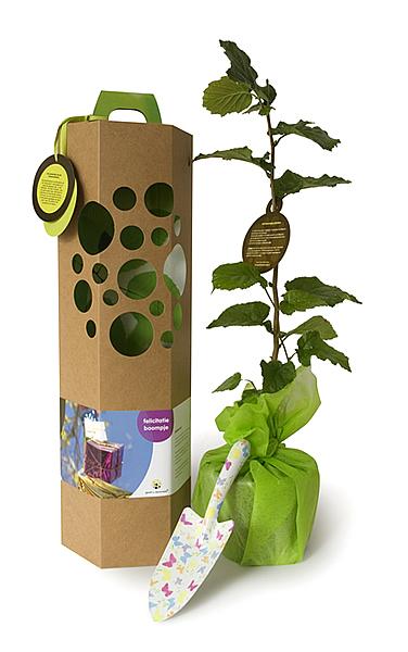 Livethinkpositive look online geef een boompje cadeau for Geef een goed doel cadeau