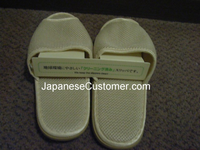 Indoor Slippers Japan Copyright Peter Hanami 2010