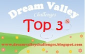 Dream Valley Challenges top 3