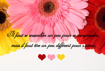 citation-amour