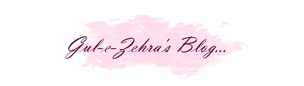 Gul-e-Zehra's Blog