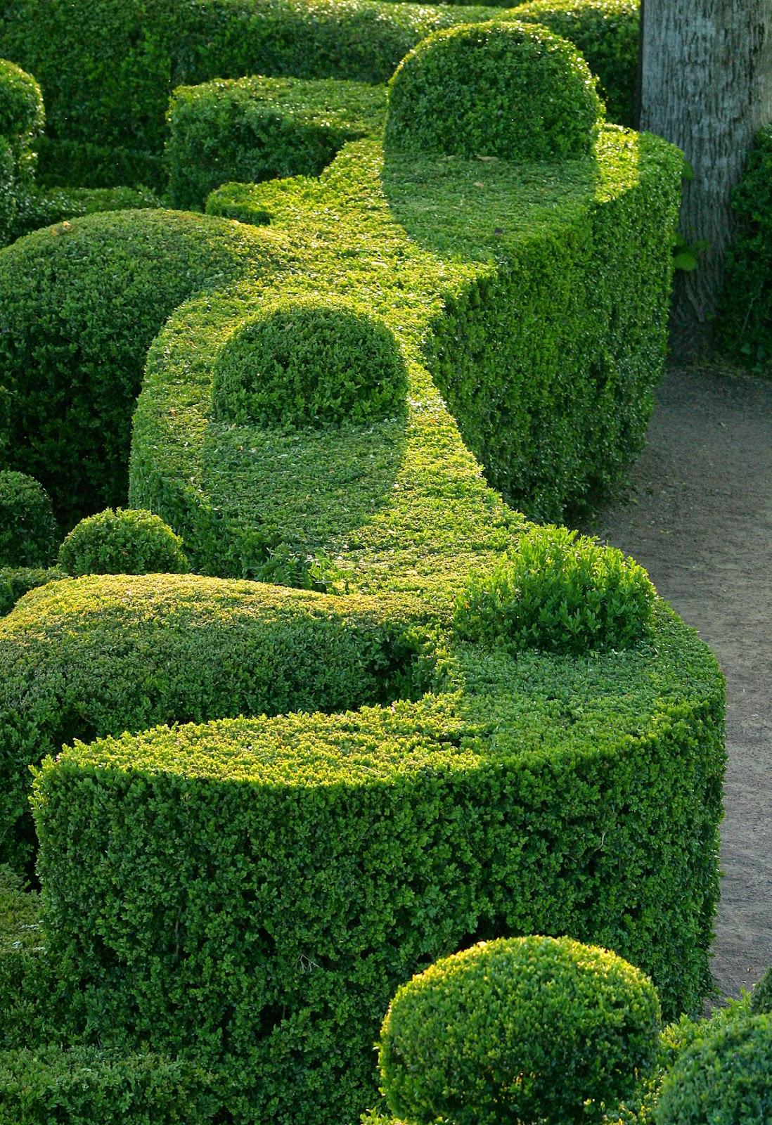 Au fil des torrents le blog de danielle candide - Candide il faut cultiver notre jardin ...