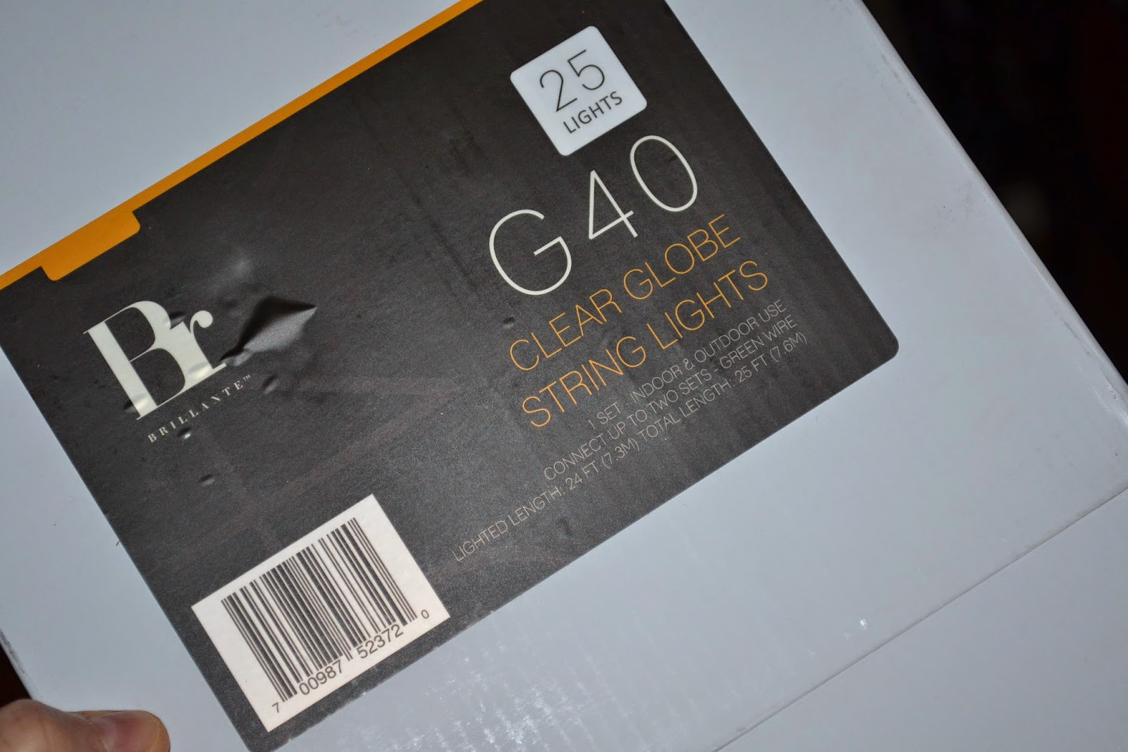 Review ~ Clear Globe String Lights for Indoor and Outdoor Use!