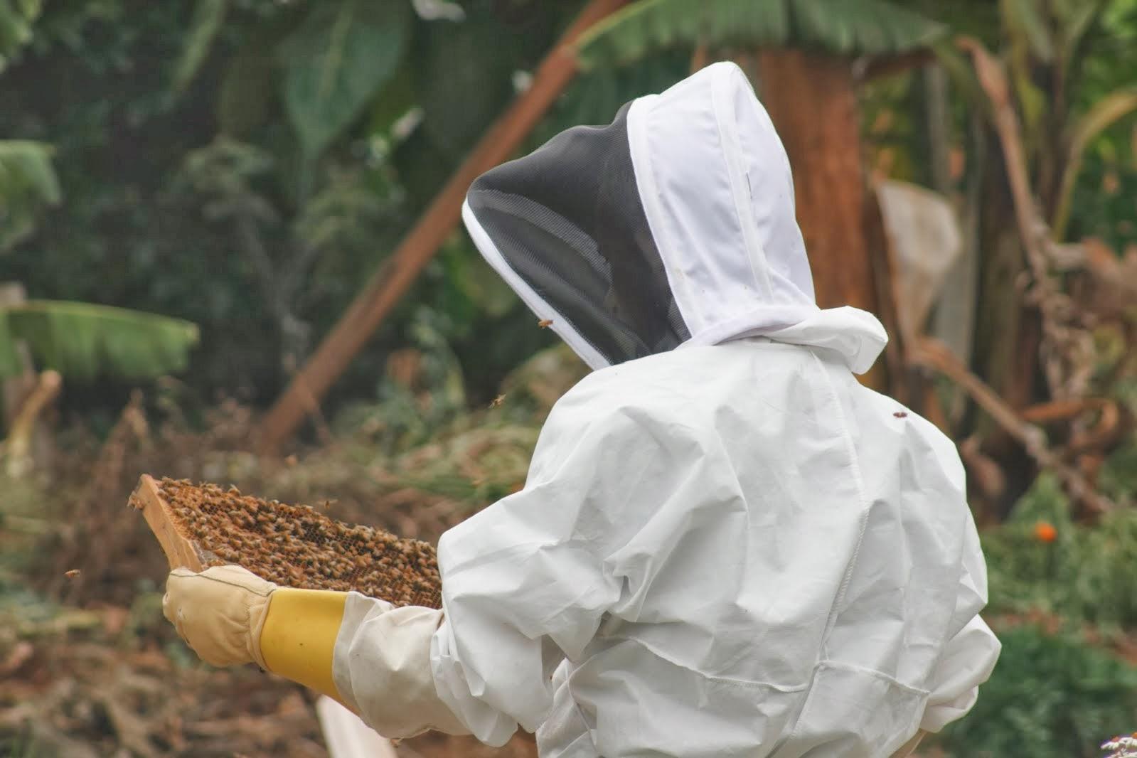 Bee Caring