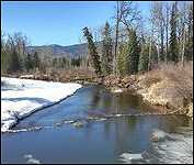 Bulkley River