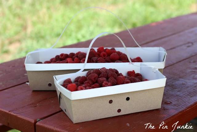 raspberry baskets