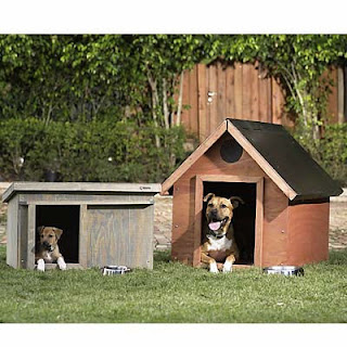 Way To Construct A Canine Run With Connected Doghouse DIY Com