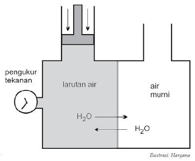 Alat untuk mengukur tekanan osmosis.