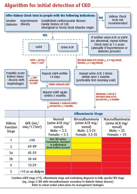 diabetes management in general practice pdf