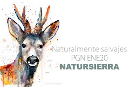 Agenda ENE20