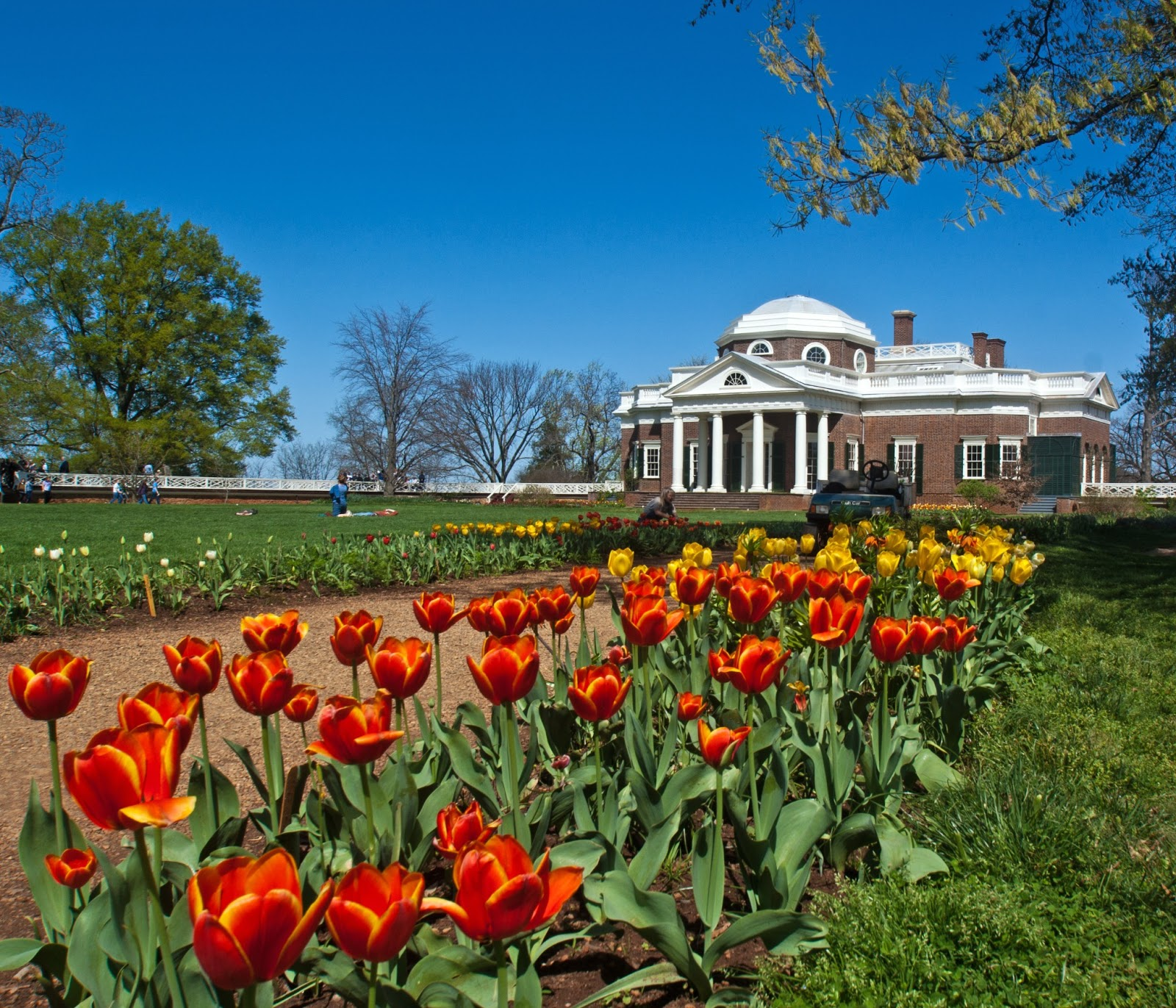Monticello Seen From The Flower Walk