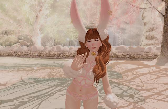 「arctic bunny」