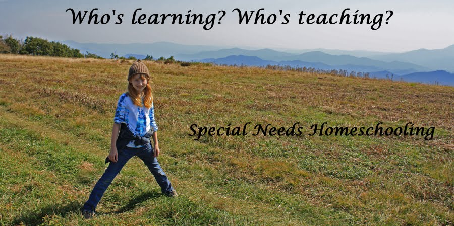 Who&#39;s learning? Who&#39;s teaching?