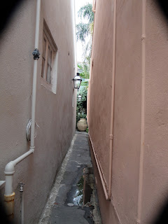 A secret garden, way in the back, in the French Quarter of New Orleans.
