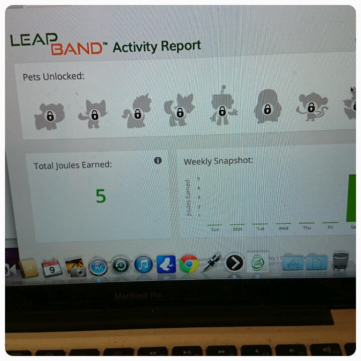leapband activity report