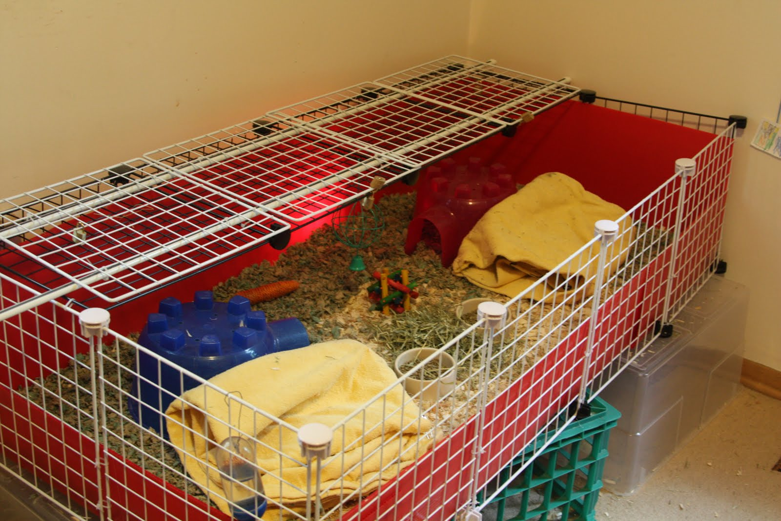 Kibbles 39 n knits diy guinea pig cage for Diy guinea pig hutch