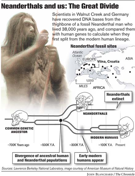 an analysis of the existence of neanderthals Analysis of neanderthal teeth grooves uncovers evidence of prehistoric dentistry date: june 28, 2017 source: university of kansas summary: a discovery of multiple toothpick grooves on teeth and signs of other manipulations by a neanderthal of 130,000 years ago are evidence of a kind of prehistoric dentistry, according to a new study researcher.