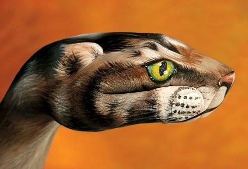 02-Cat-Guido-Daniele-Artist-Hand-Painting-Italian