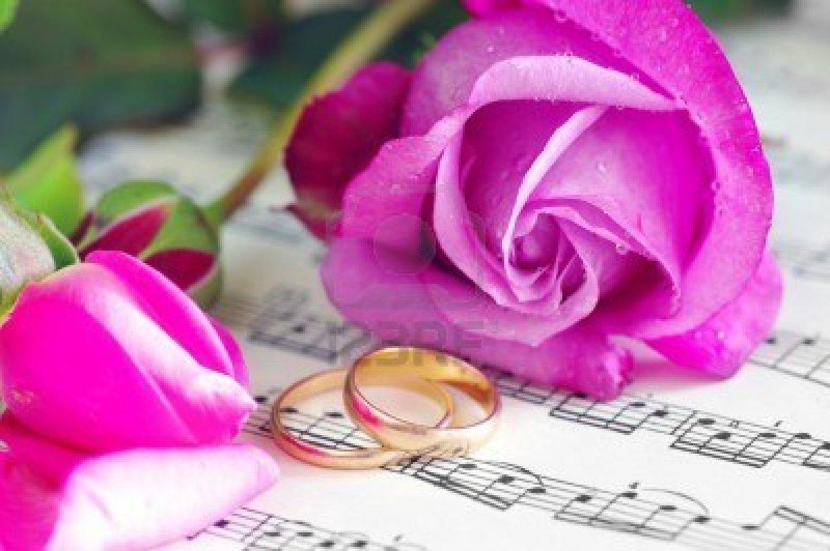 N k flores preciosas - Fotos flores preciosas ...