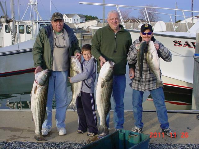 Saltwater report chesapeake bay fishing report for Chesapeake bay fishing report