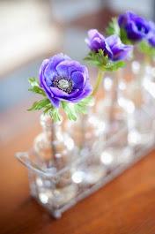 Amor lilás