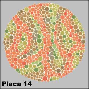 Teste de Ishihara - Placa número 14