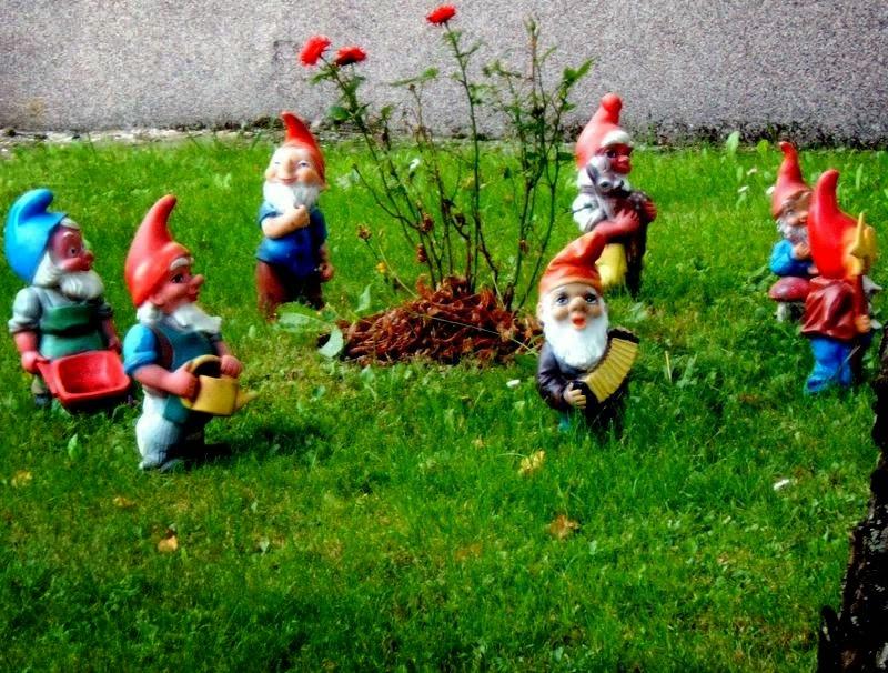 QuÉ qUiErEs qUe Te cUeNtE?: Tu jardín con enanitos