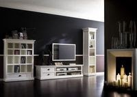 Infinita HALIFAX White Mahogany TV Console and Media Center with 2 Drawers