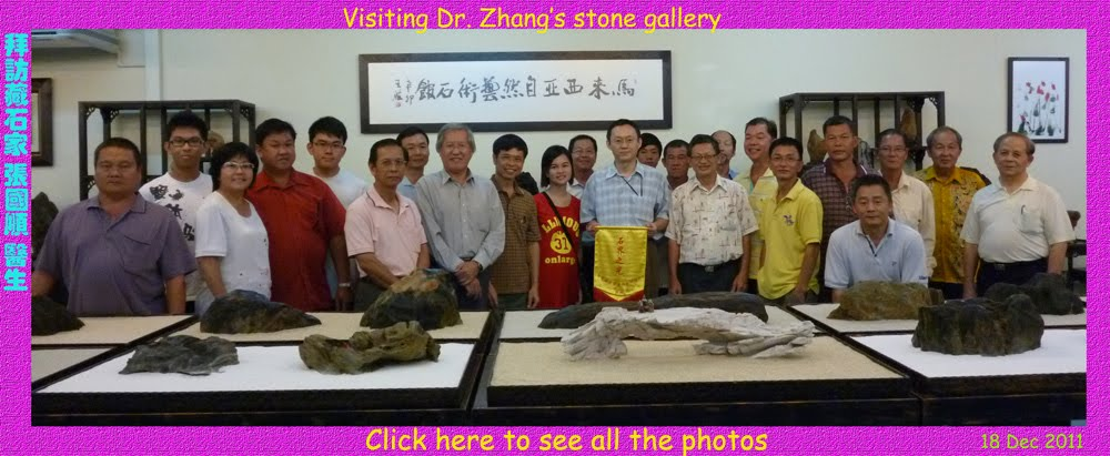 Dr Zhang gallery
