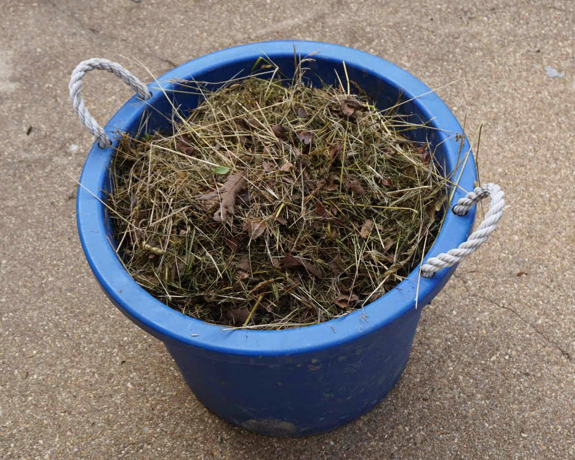 Hay Bale Gardening: Pictorial Guide for Growing Wheatgrass in a ...