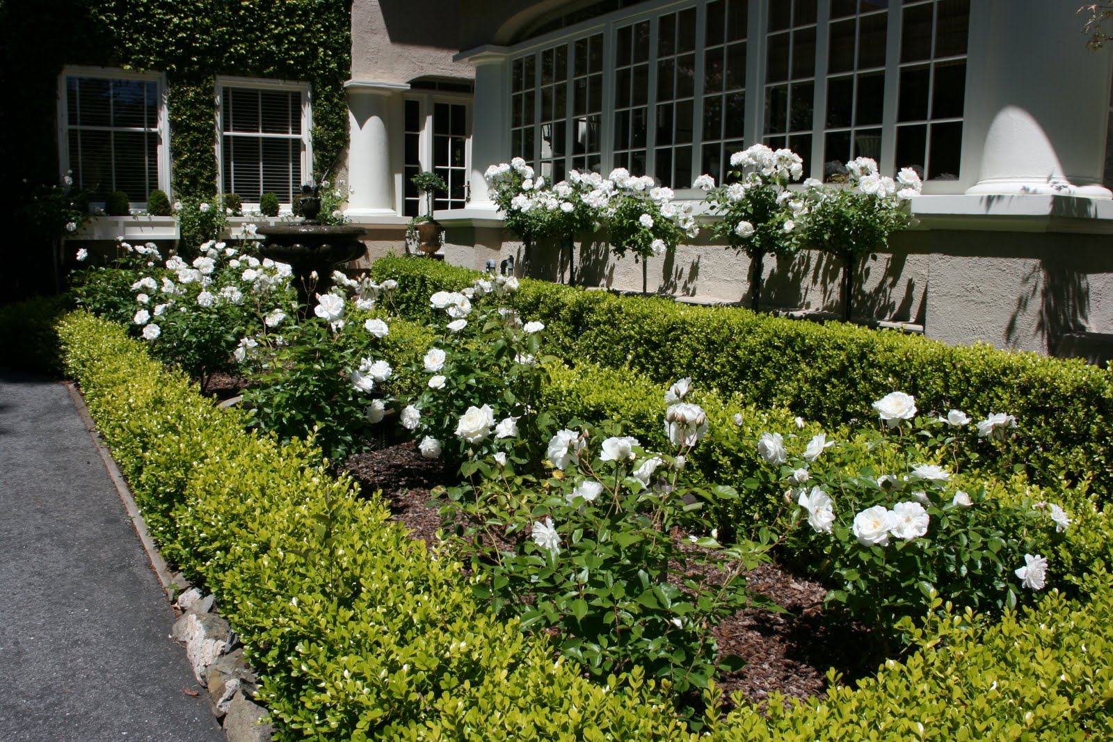 Landscaping With Boxwoods And Roses : Vignette design garden vignettes