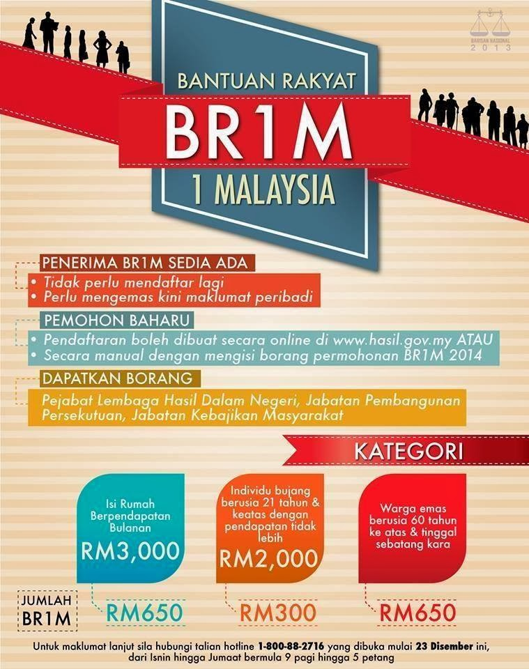 BR1M 2014