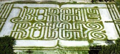 Plantamer el jard n laberinto borges en venecia for Borges el jardin