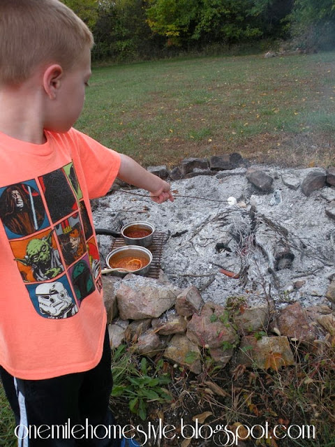 Little Brother Toasting His Marshmallows