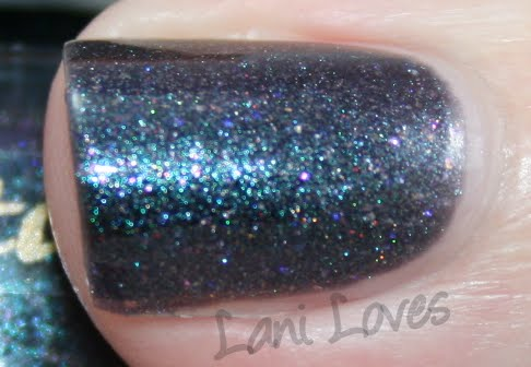 Star Kin Orion Swatch