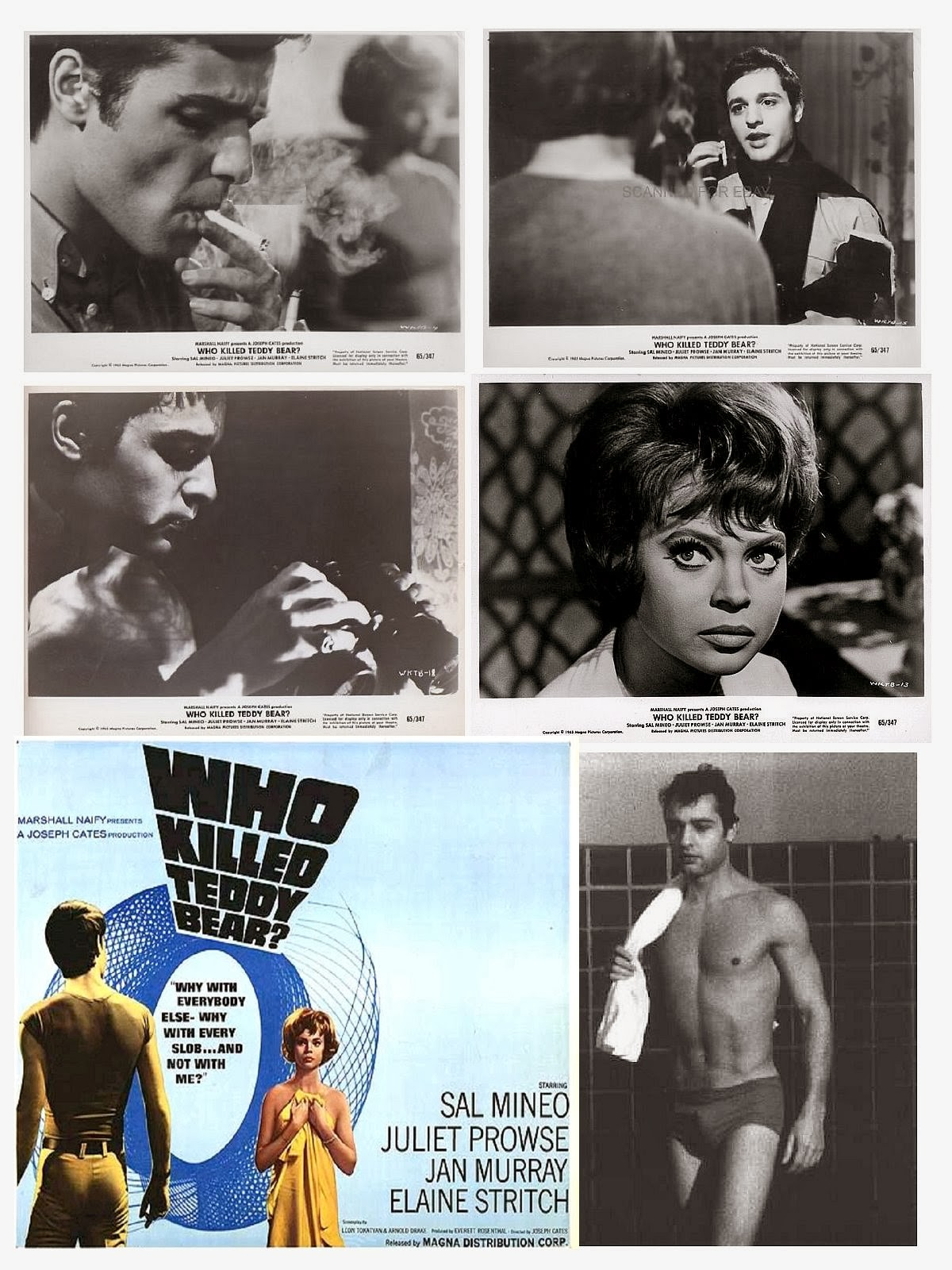 "CULT classic! Sal Mineo ""Who Killed Teddy Bear?"" (1965) Juliet Prowse DVD"