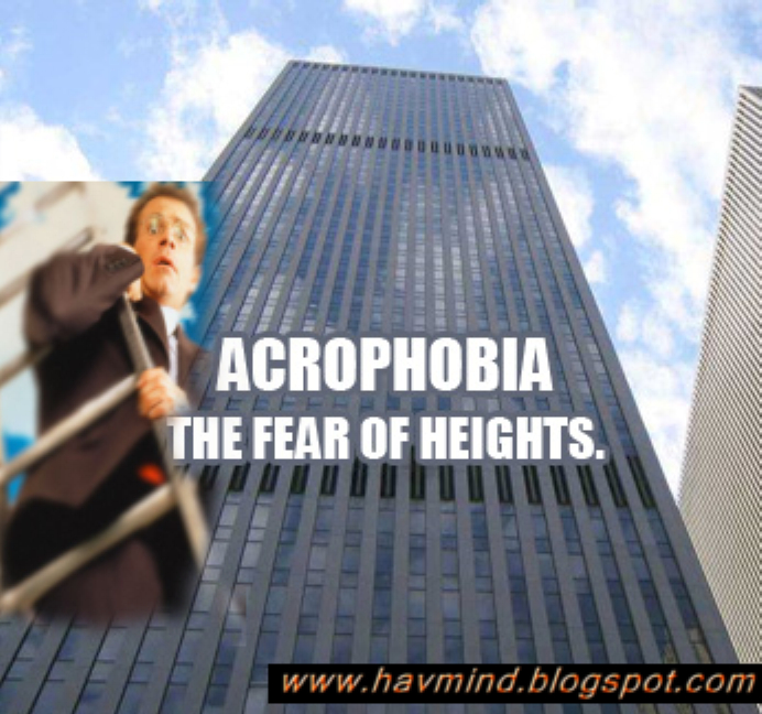 essays on fear of heights My biggest fear 2 pages 565 words february 2015 saved essays save your essays here but one may fear the dark while the other fears heights.