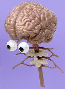 Argument: Używamy tylko 10% mózgu