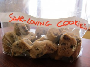 low sugar double chocolate chip cookes