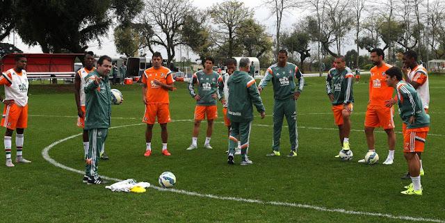 O Fluminense mira voltar ao caminho certo no Brasileirão conquistando vitórias (Foto: Nelson Perez/FFC)