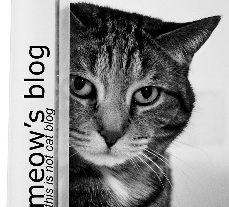meOw's Blog